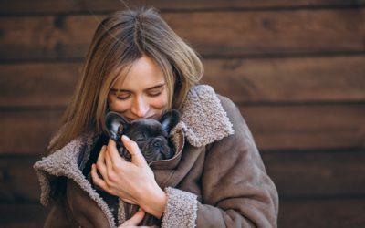 Siete consejos para proteger a tu mascota del frío en invierno