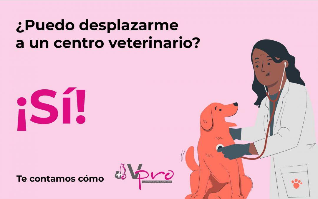 Seguimos abiertos para cuidar de la salud de tu mascota